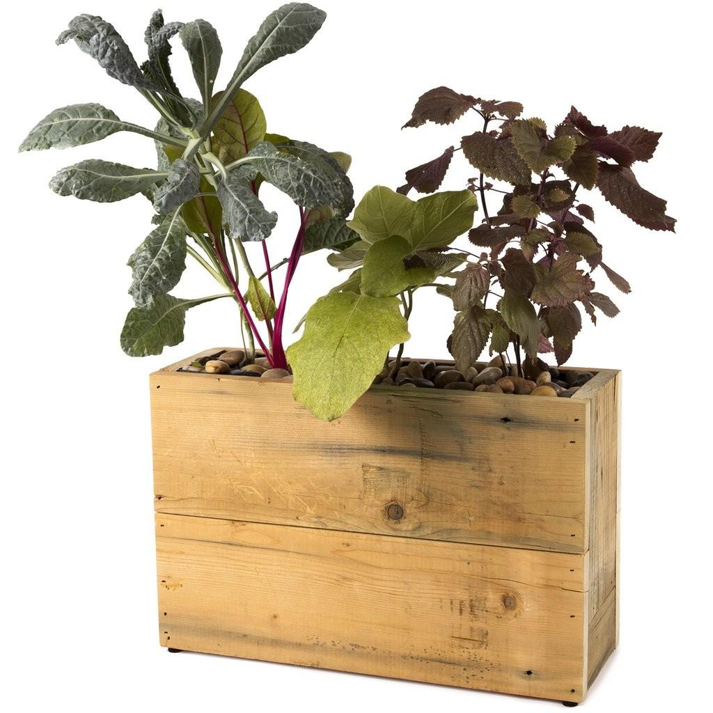 Pot Hydro Planter Reclaimed Wood Modernsprout
