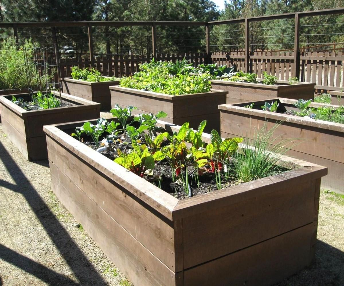 Precious Raised Flower Bed Ideas Brown Wooden