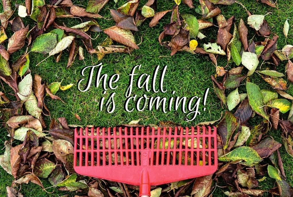 Prepare Your Yard Fall Turf Unlimited