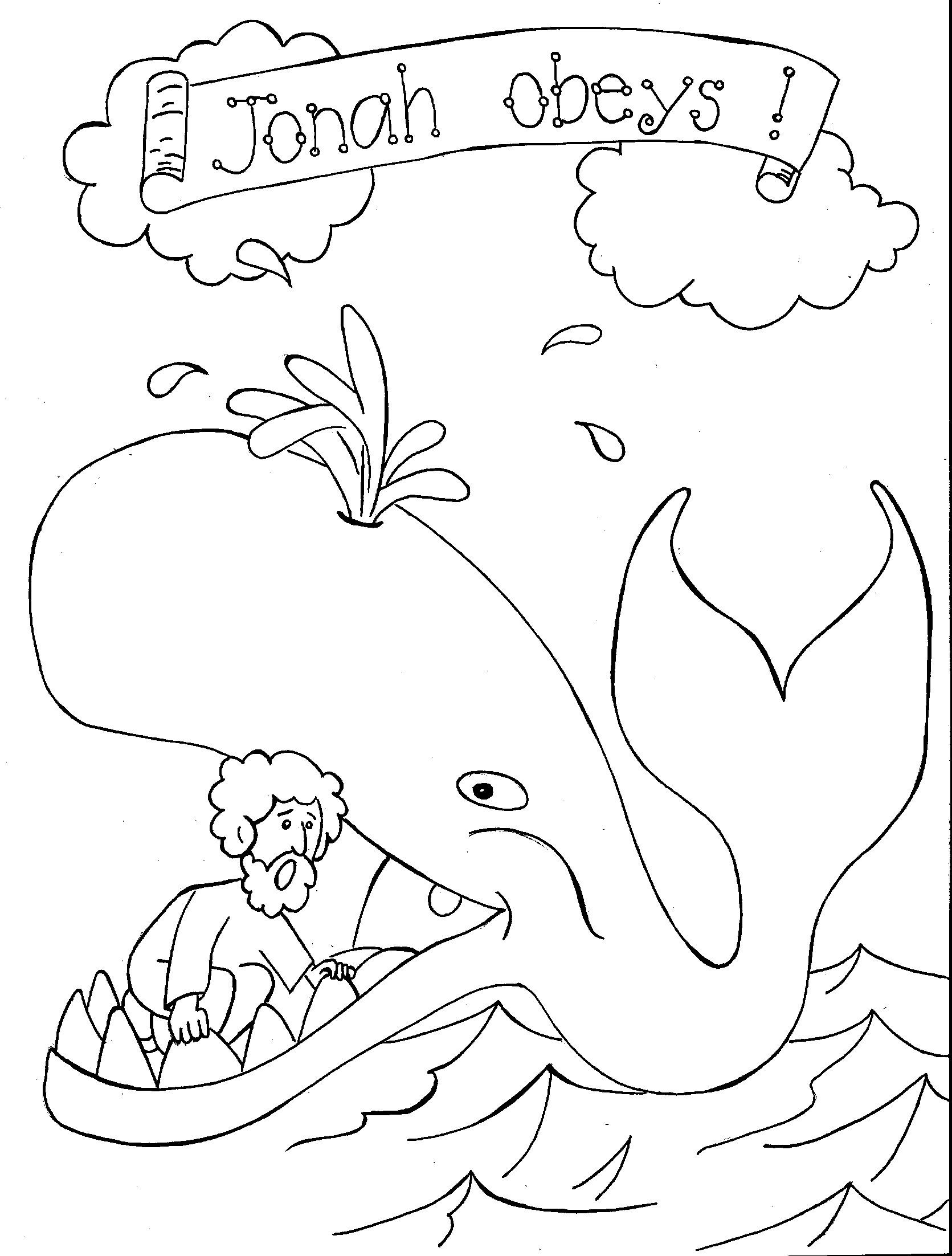 Printable Whale Coloring Pages Kids