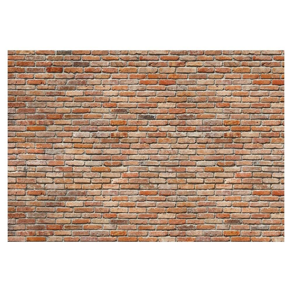Provincial Wallcoverings 741 Exposed Brick Wall Mural