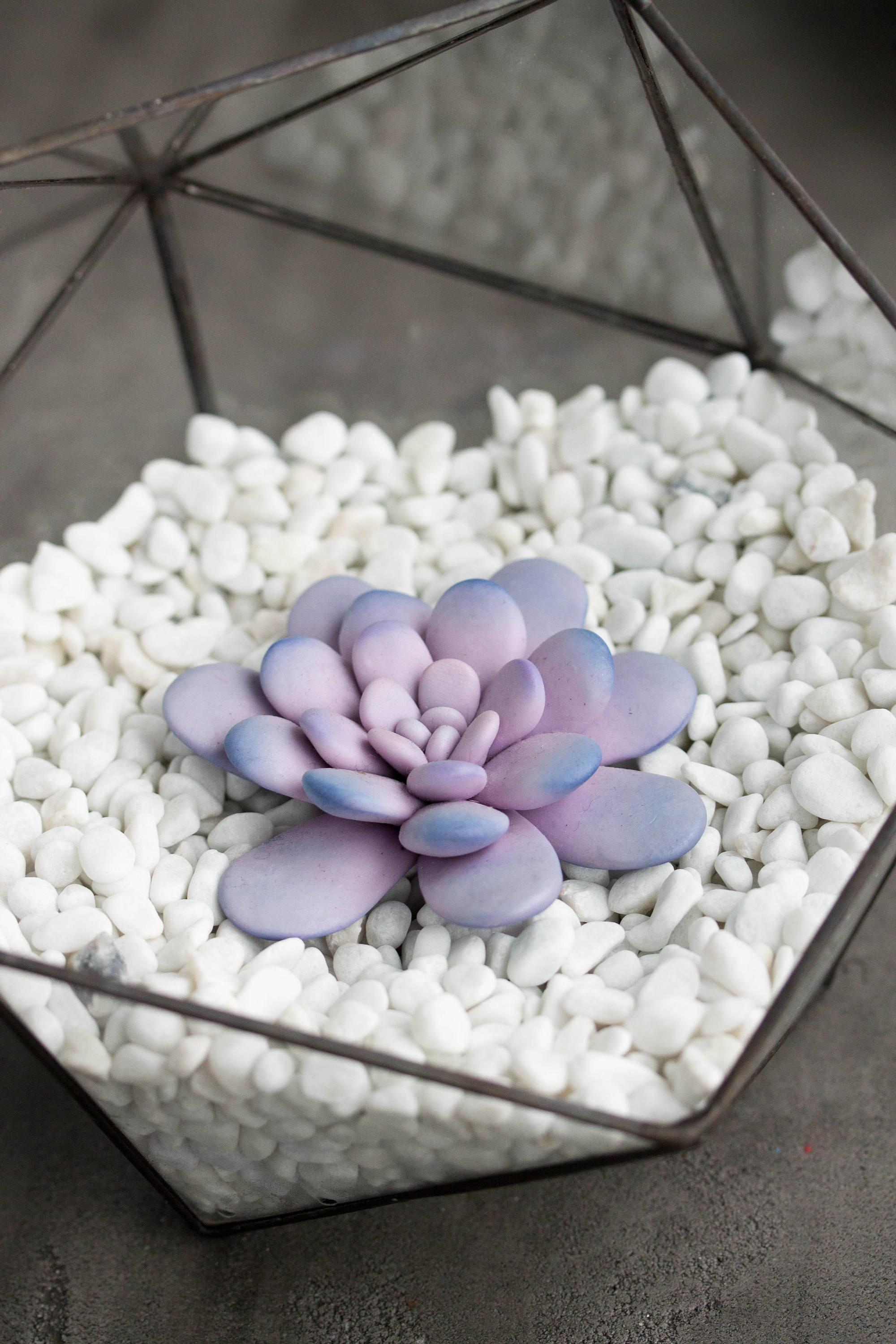 Purple Pink Succulent Fairy Garden Cup Ideas Polymer Clay