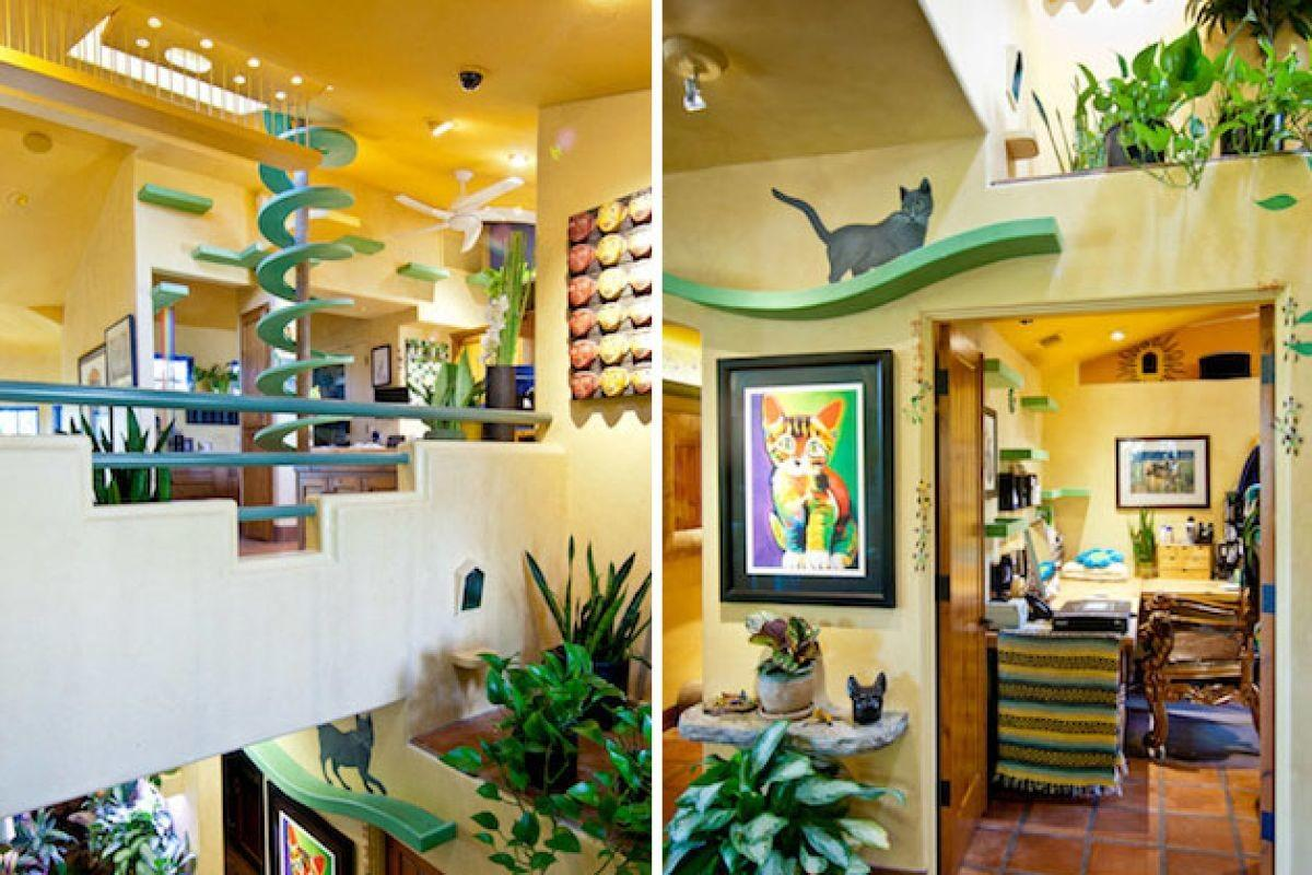 Purrfect Home Serious Cat Lover Homes Hues