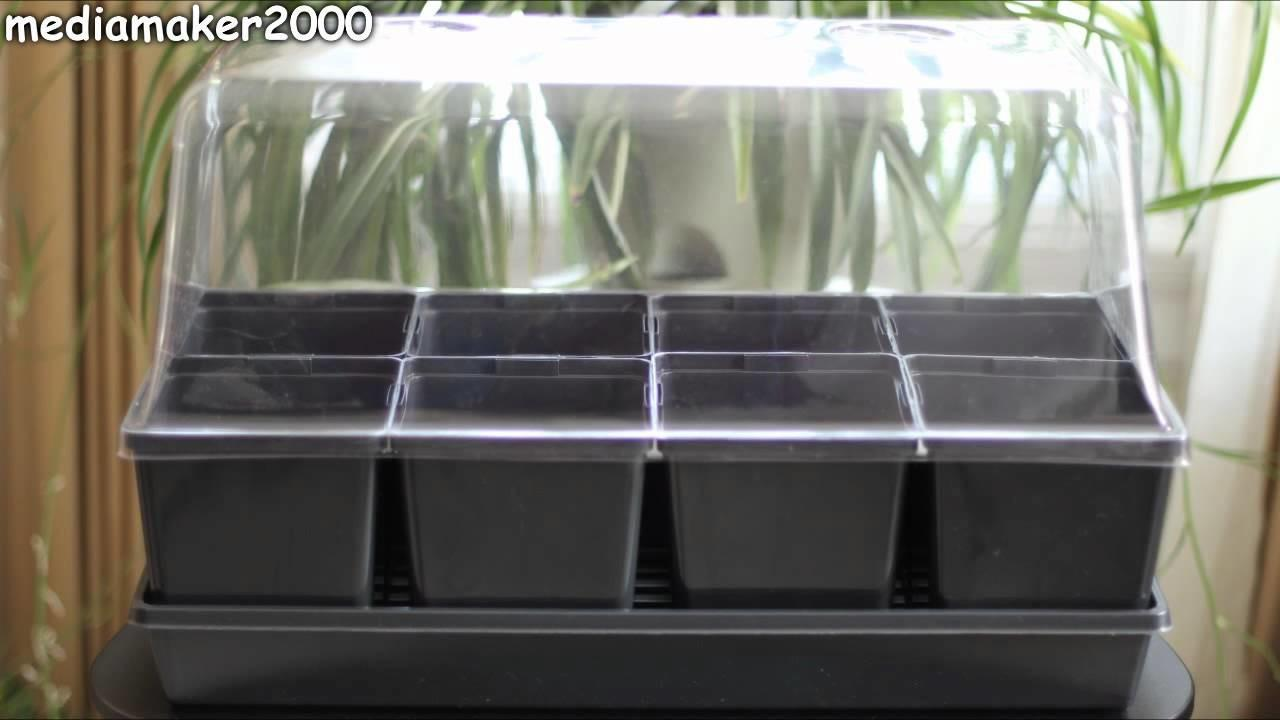 Quick Easy Self Watering Indoor Outdoor Greenhouse Diy