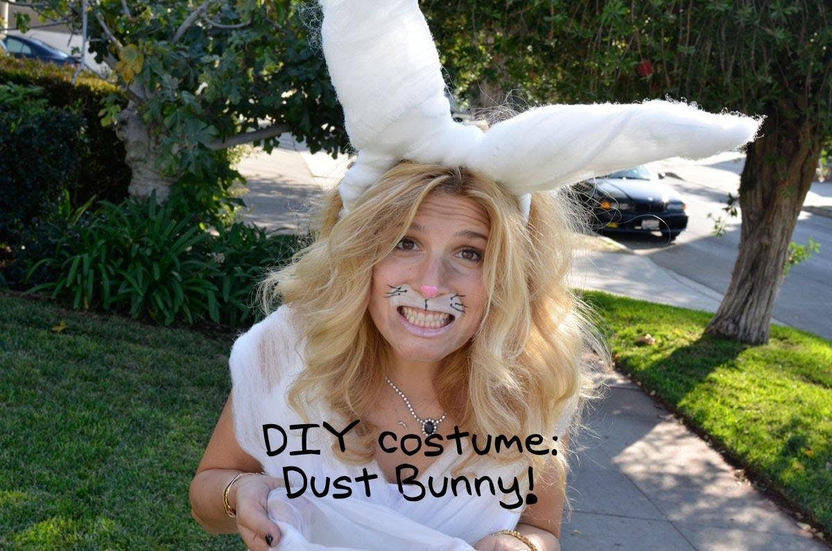 Quickie Dust Bunny Costume Kate