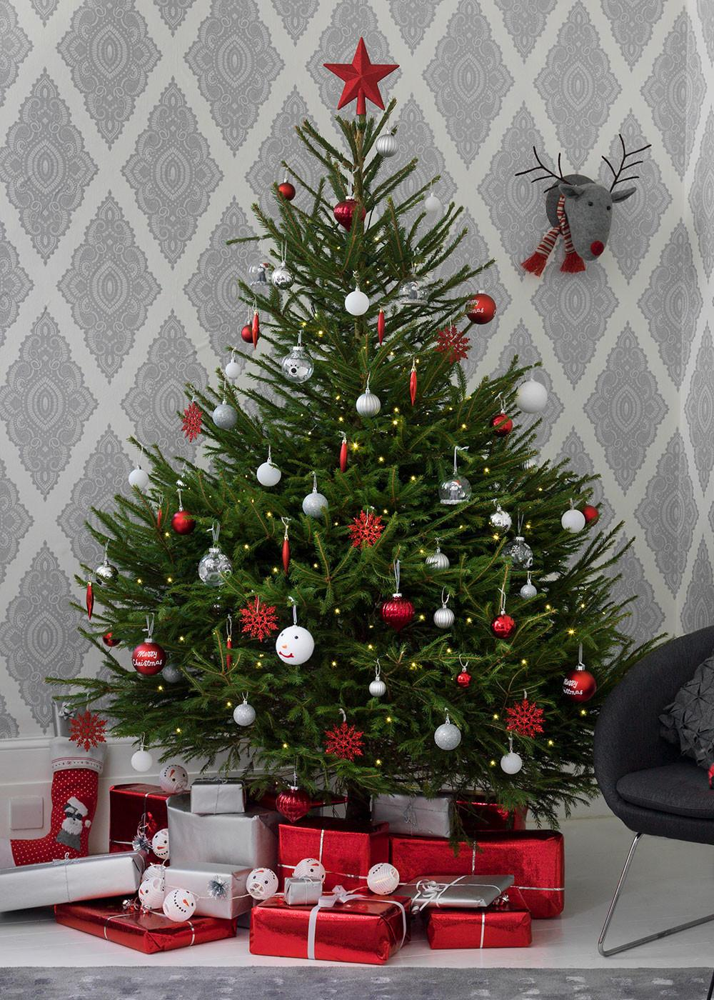 Real Christmas Trees Buy Decorate Care