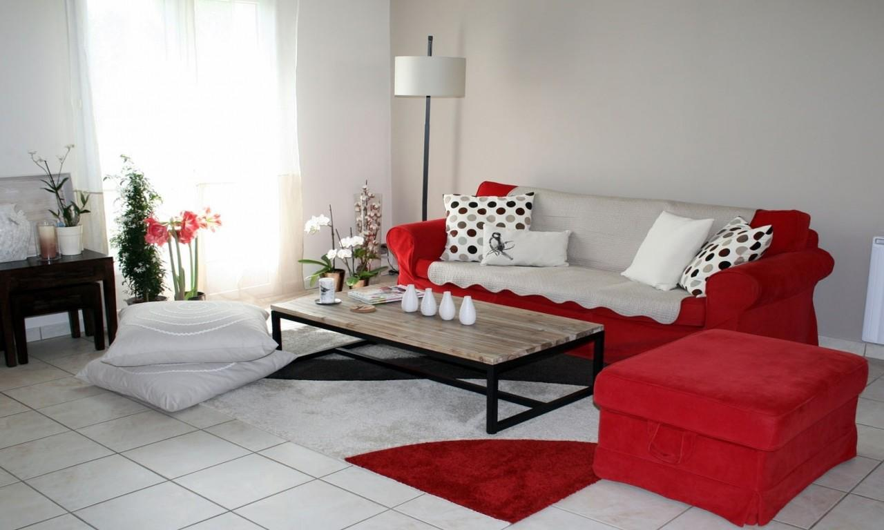 Red Grey Living Room Ideas Modern House