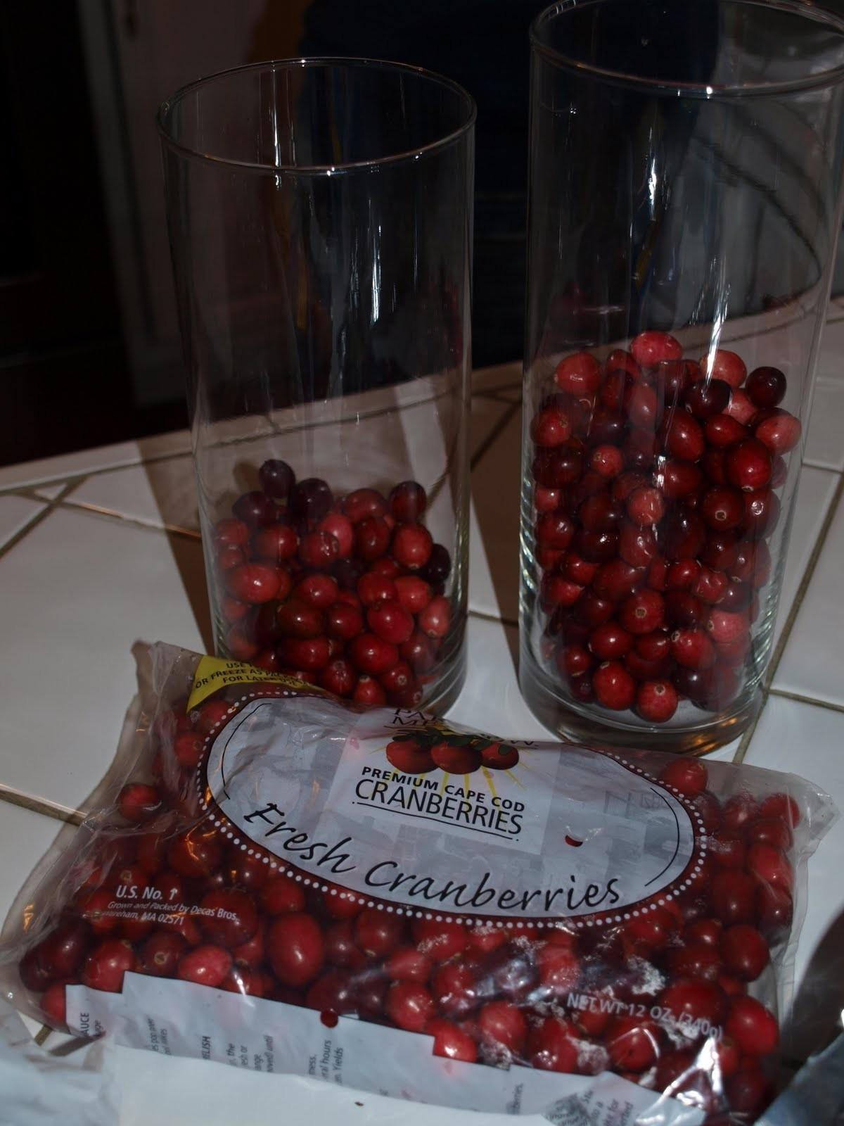 Red Heads Craft More Fun Cranberry Vases