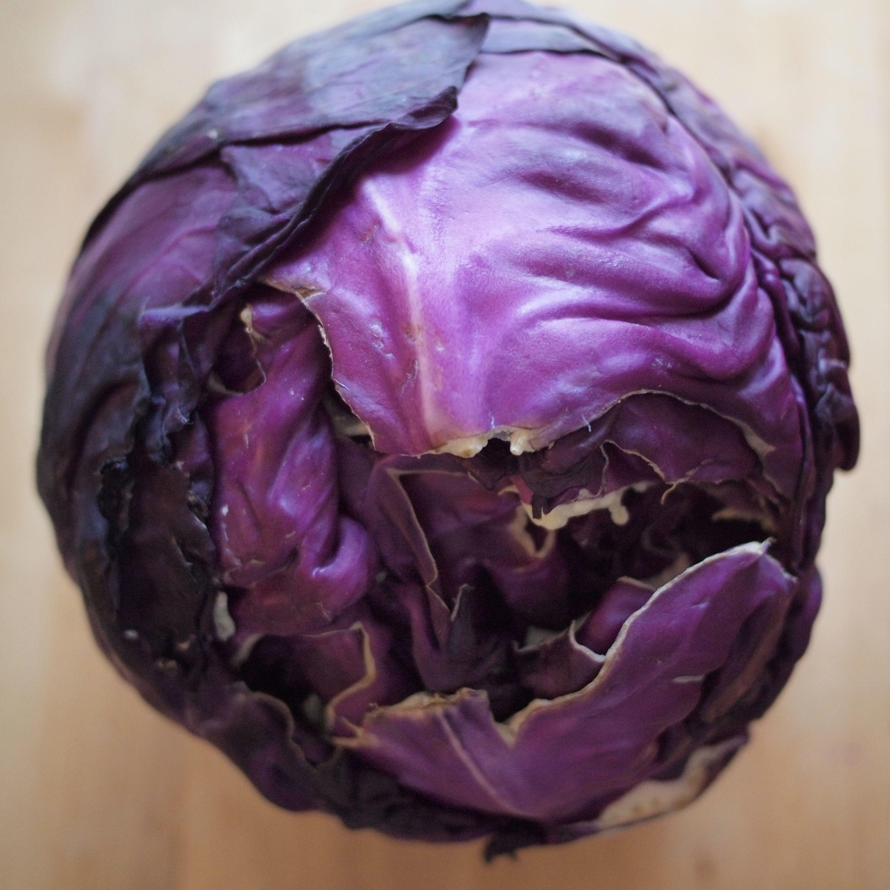 Red White Blue Experiments Using Cabbage