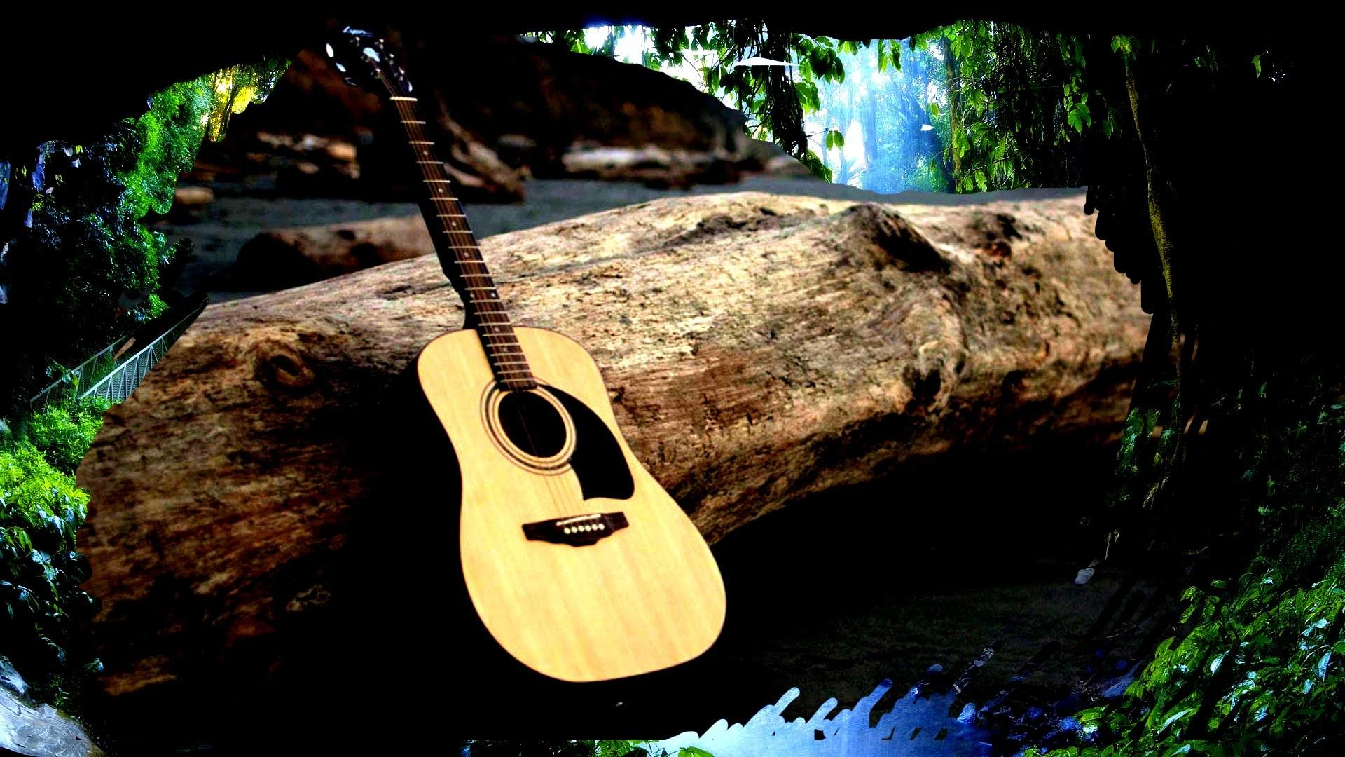 Relaxing Acoustic Guitar Music Hours Rainforest Sounds