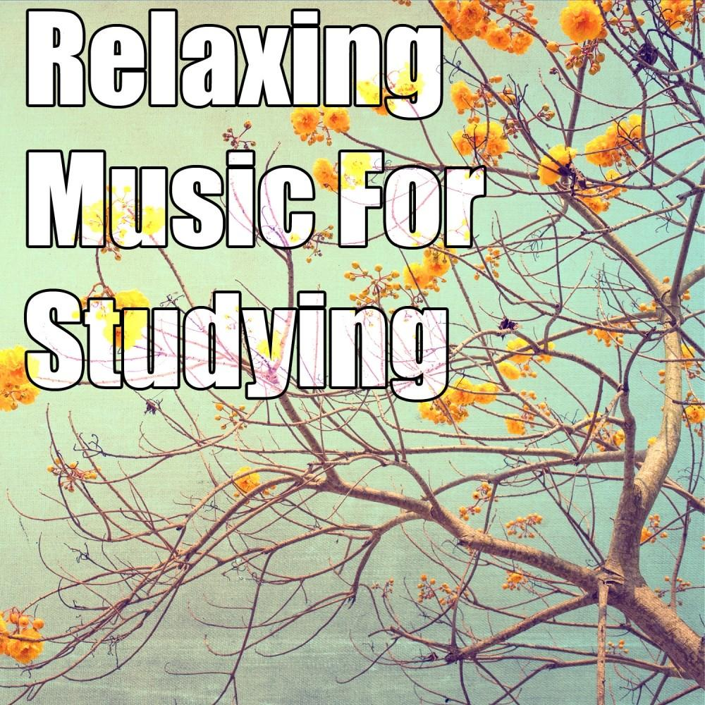 Relaxing Music Studying Spotify Playlist