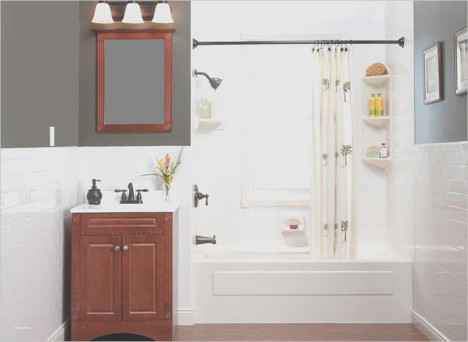Rental Apartment Bathroom Decorating Ideas Inspirational