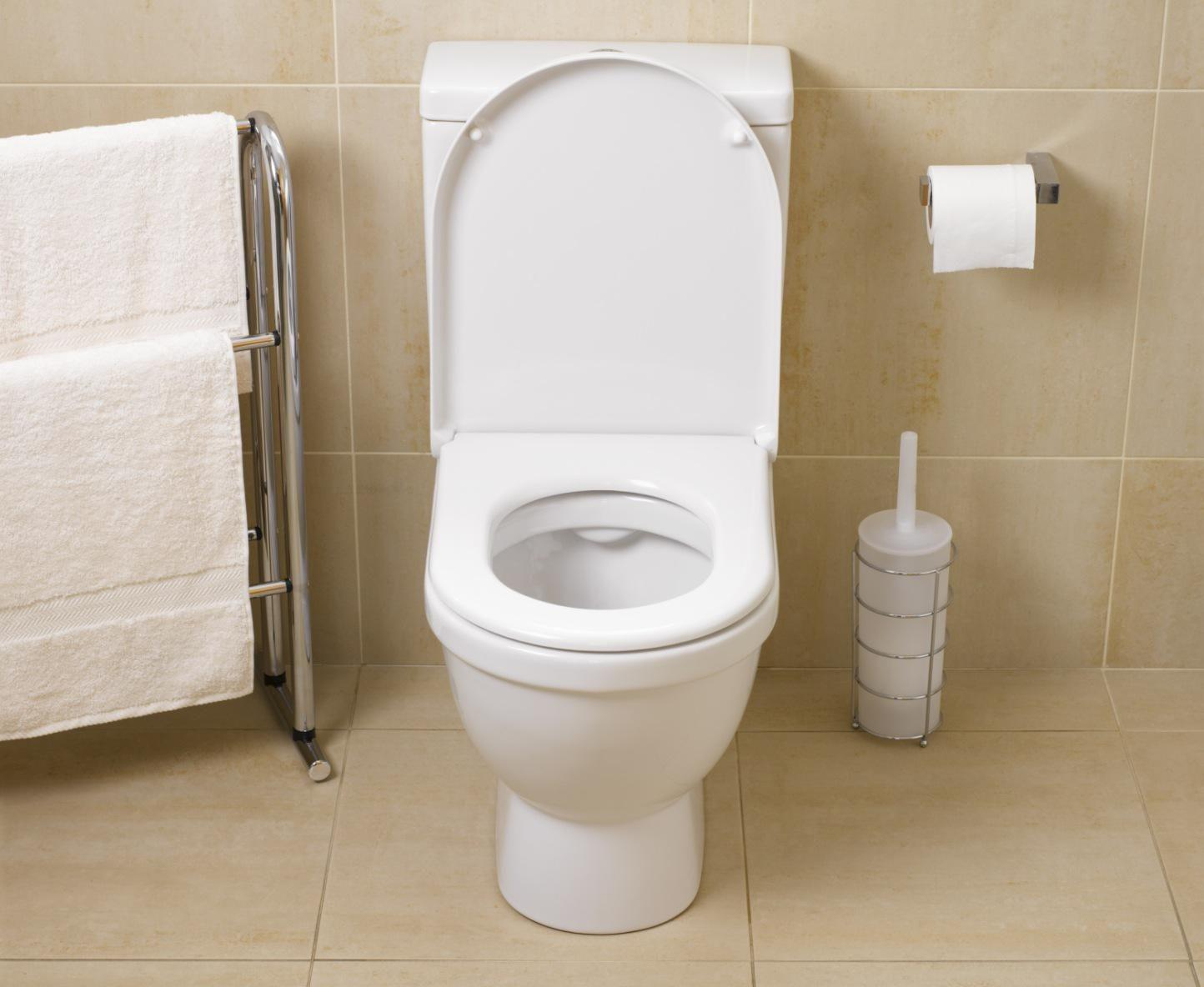 Repair Common Toilet Problems