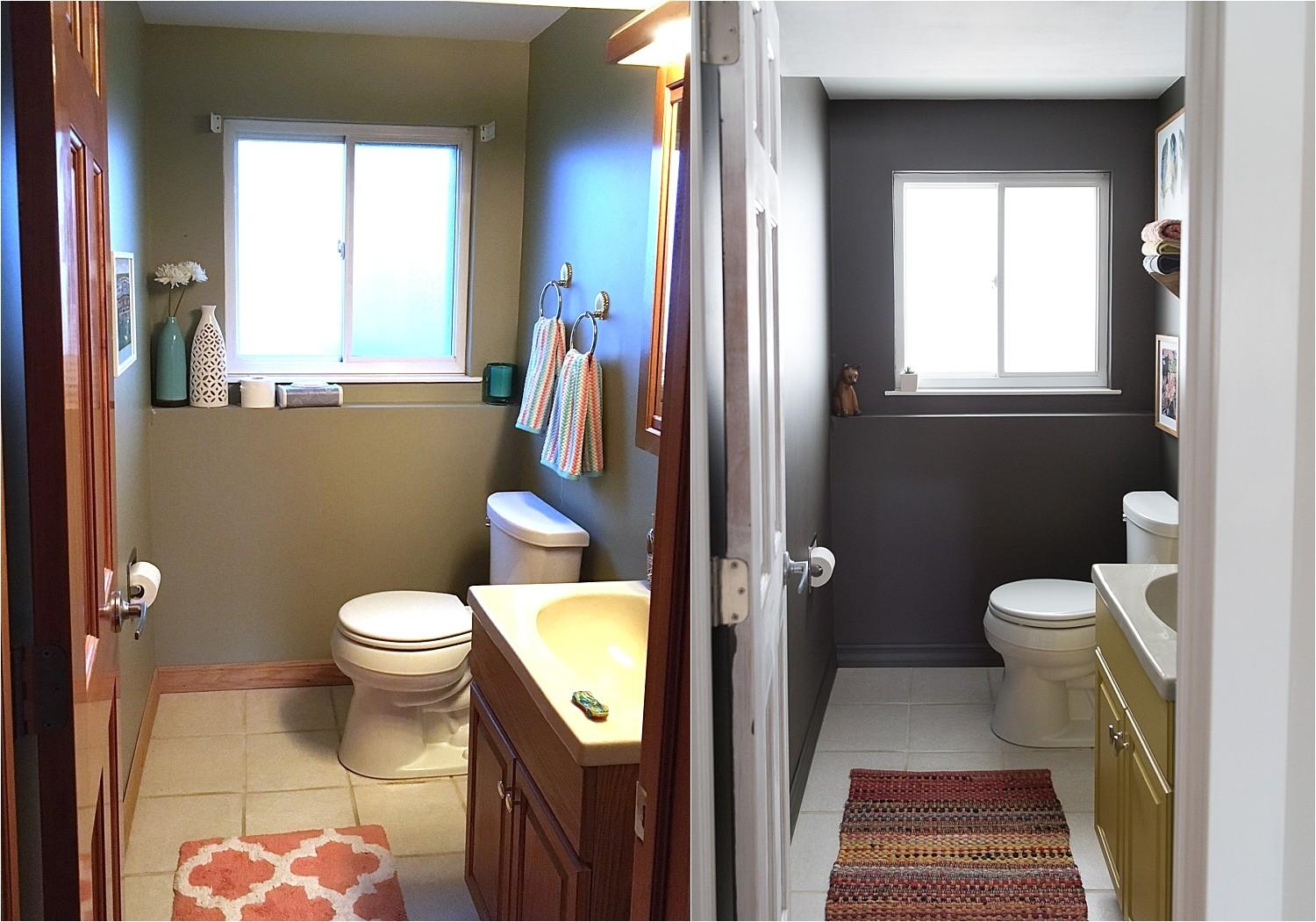 Russet Street Reno Bathroom Only Paint