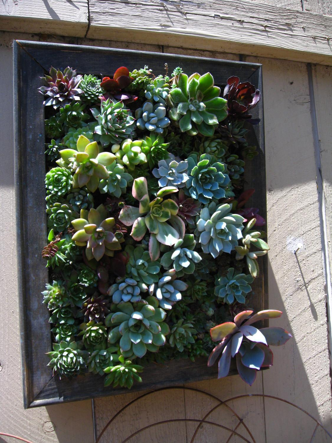 Rustic Hanging Vertical Planter Succulent Arrangement