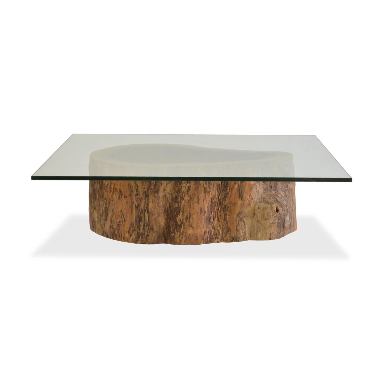 Salvage Hollow Trunk Coffee Table Square Glass Top
