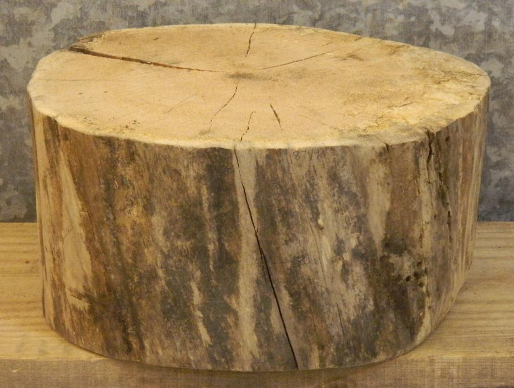 Salvaged Live Edge Spalted Maple Rough Sawn Small Log