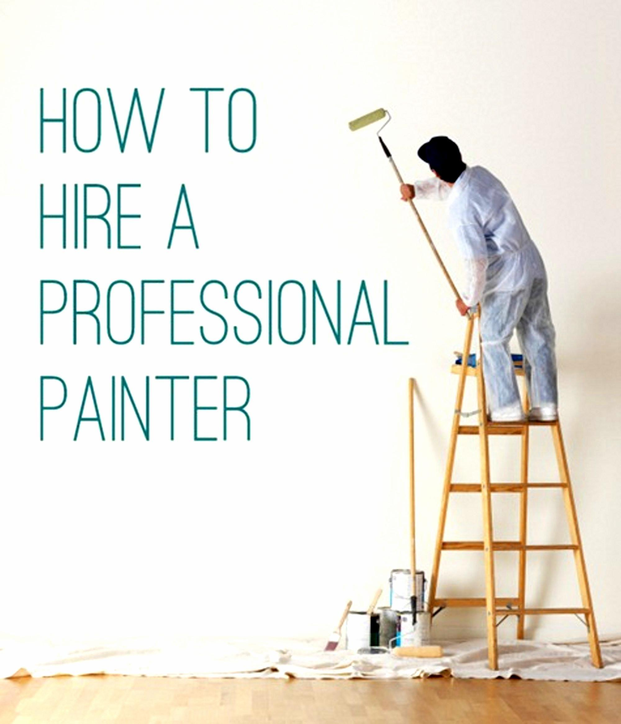 Save Money Hire Professional Painter