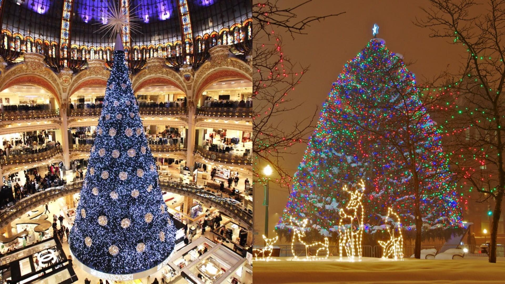 See Most Beautiful Christmas Trees Around World