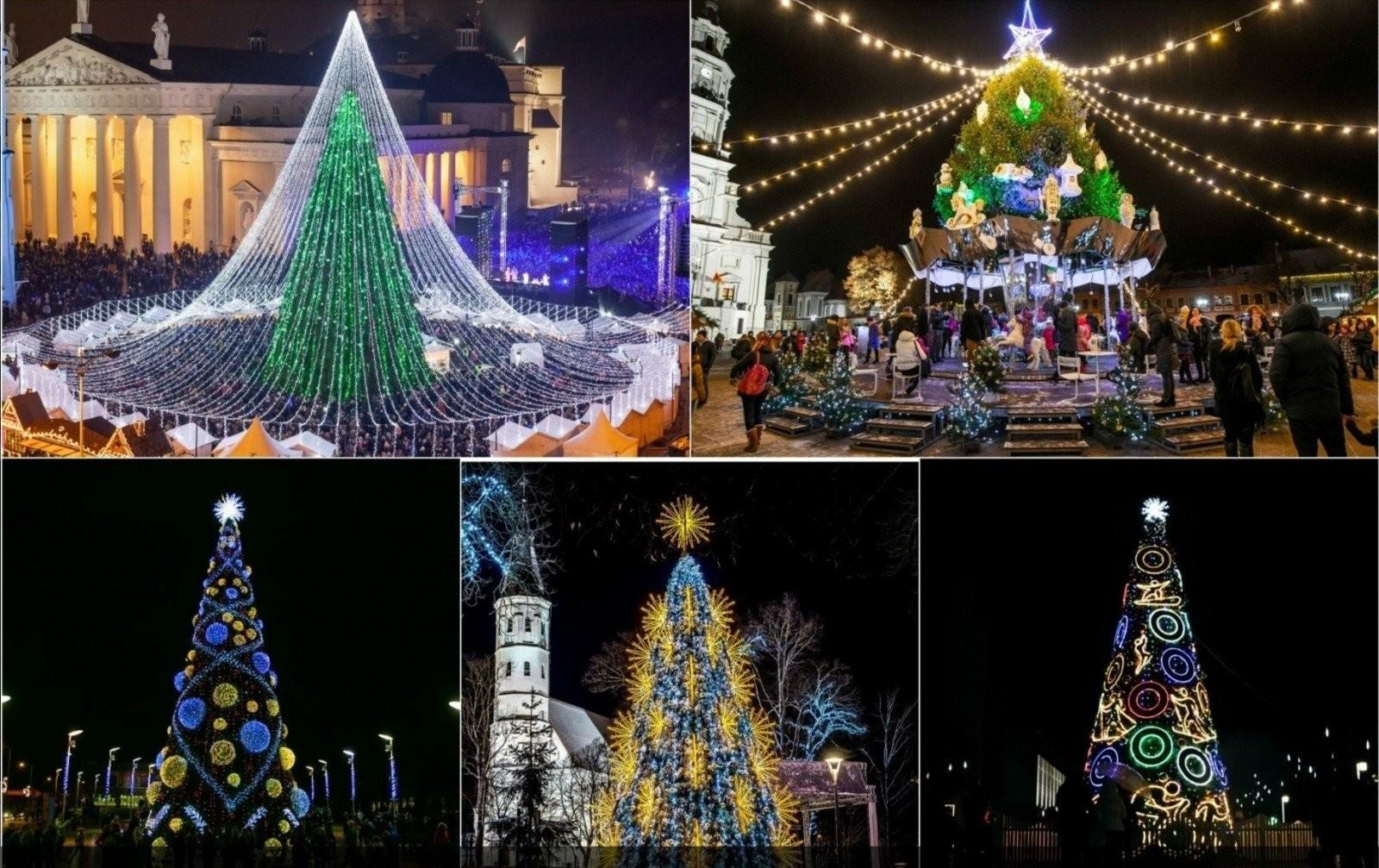 Select Most Beautiful Christmas Tree Lithuania