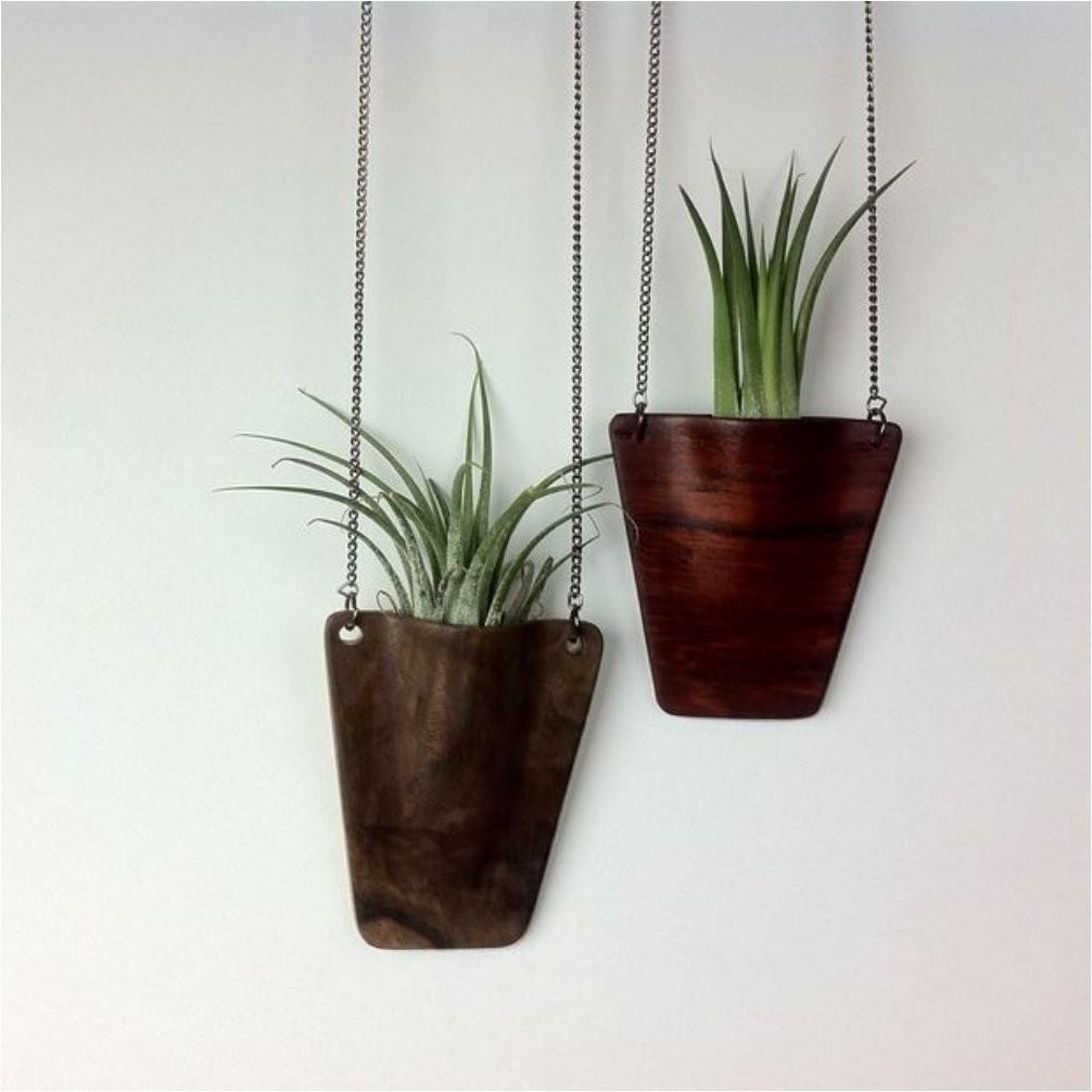 Shower Your Home Greenery These Diy Hanging