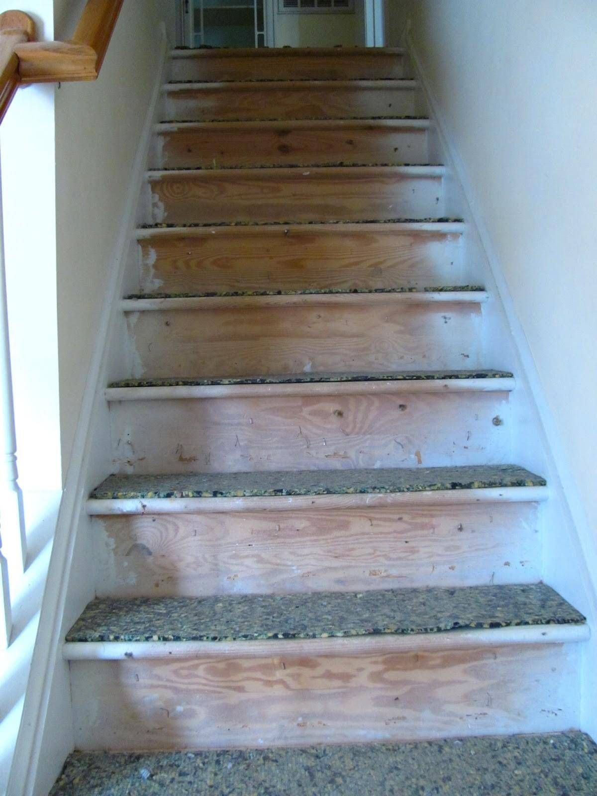 Silver Lining Decor Stair Stencil