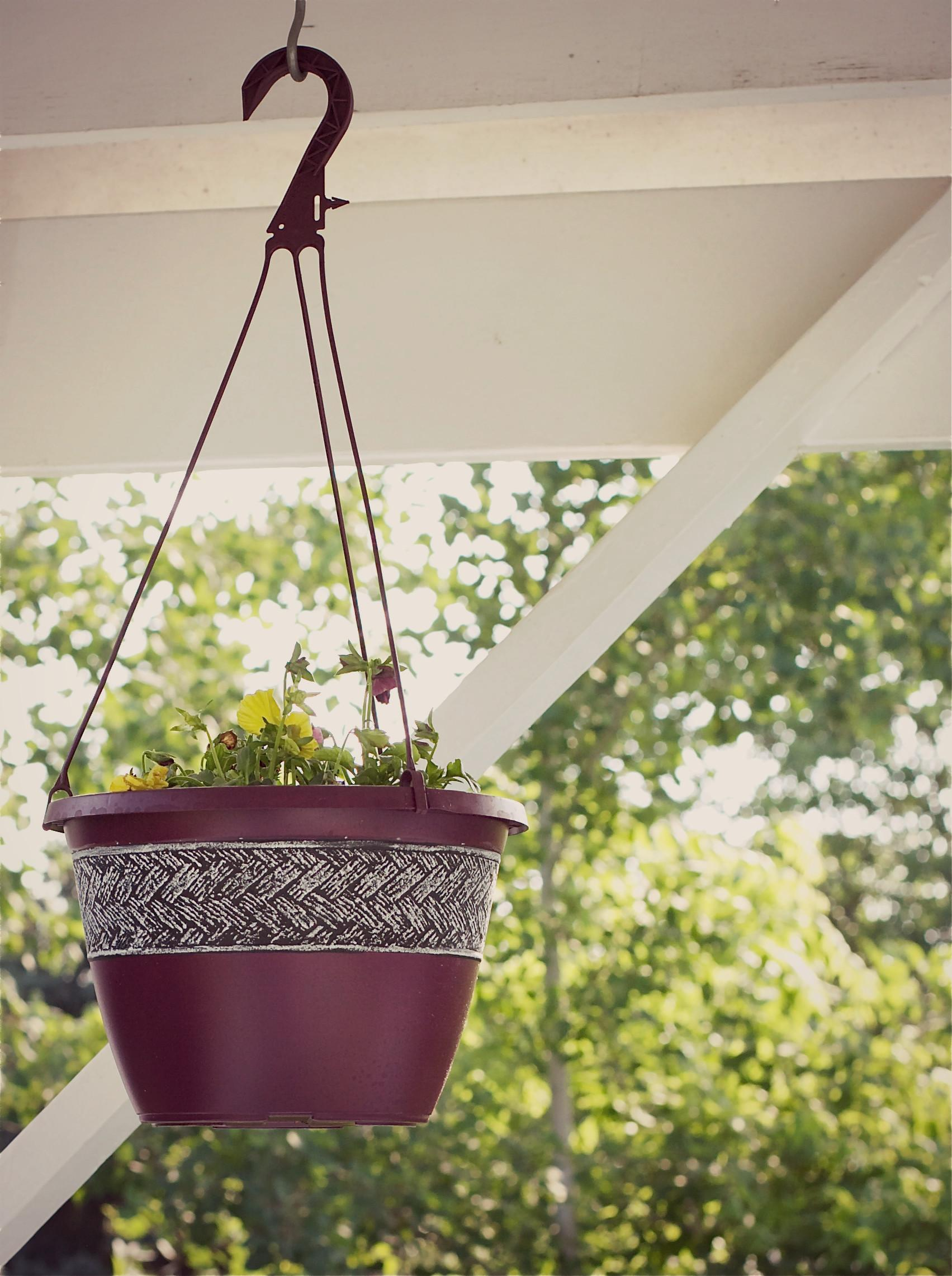 Simple Upcycled Hanging Planter