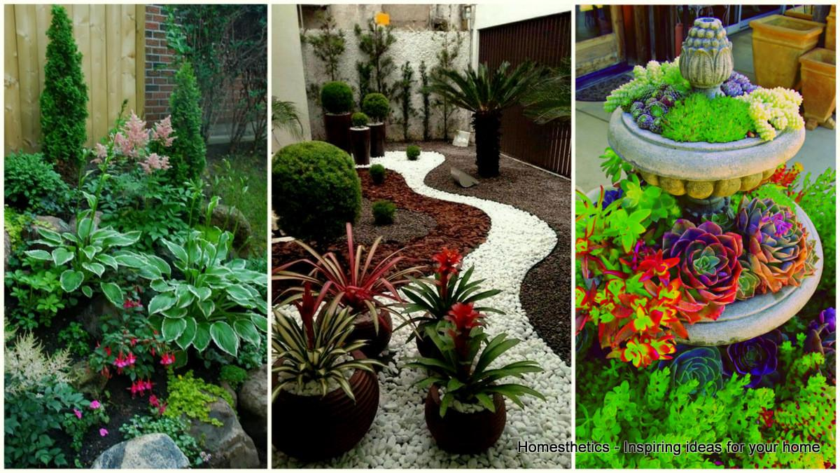 Small Front Yard Landscaping Ideas Define Your Curb