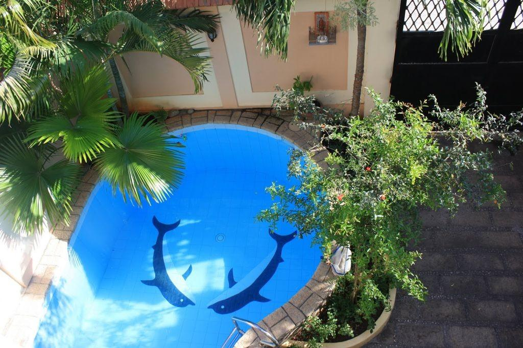 Small Round Backyard Swimming Pools Designs Dolphin