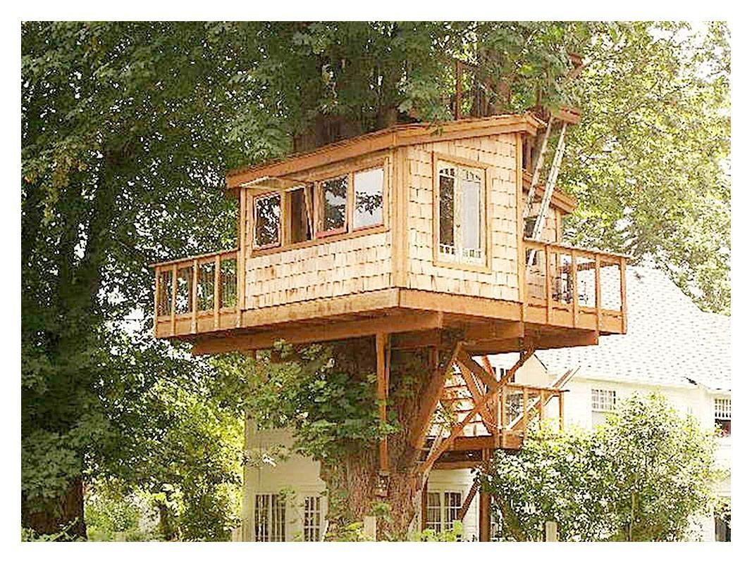 Small Tree House Plans
