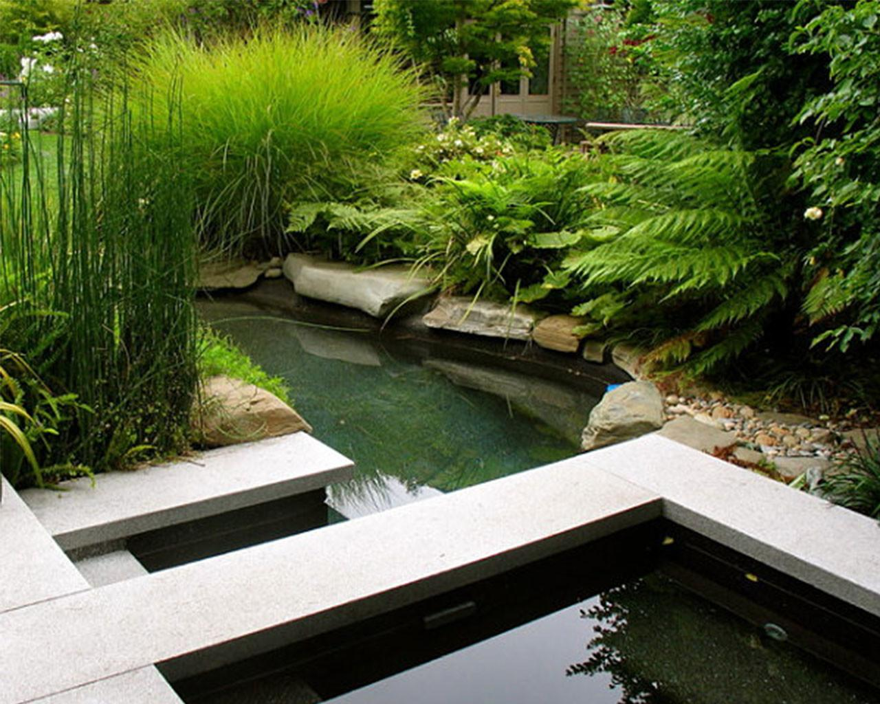 Small Water Feature Garden Pond Start Easy Backyard