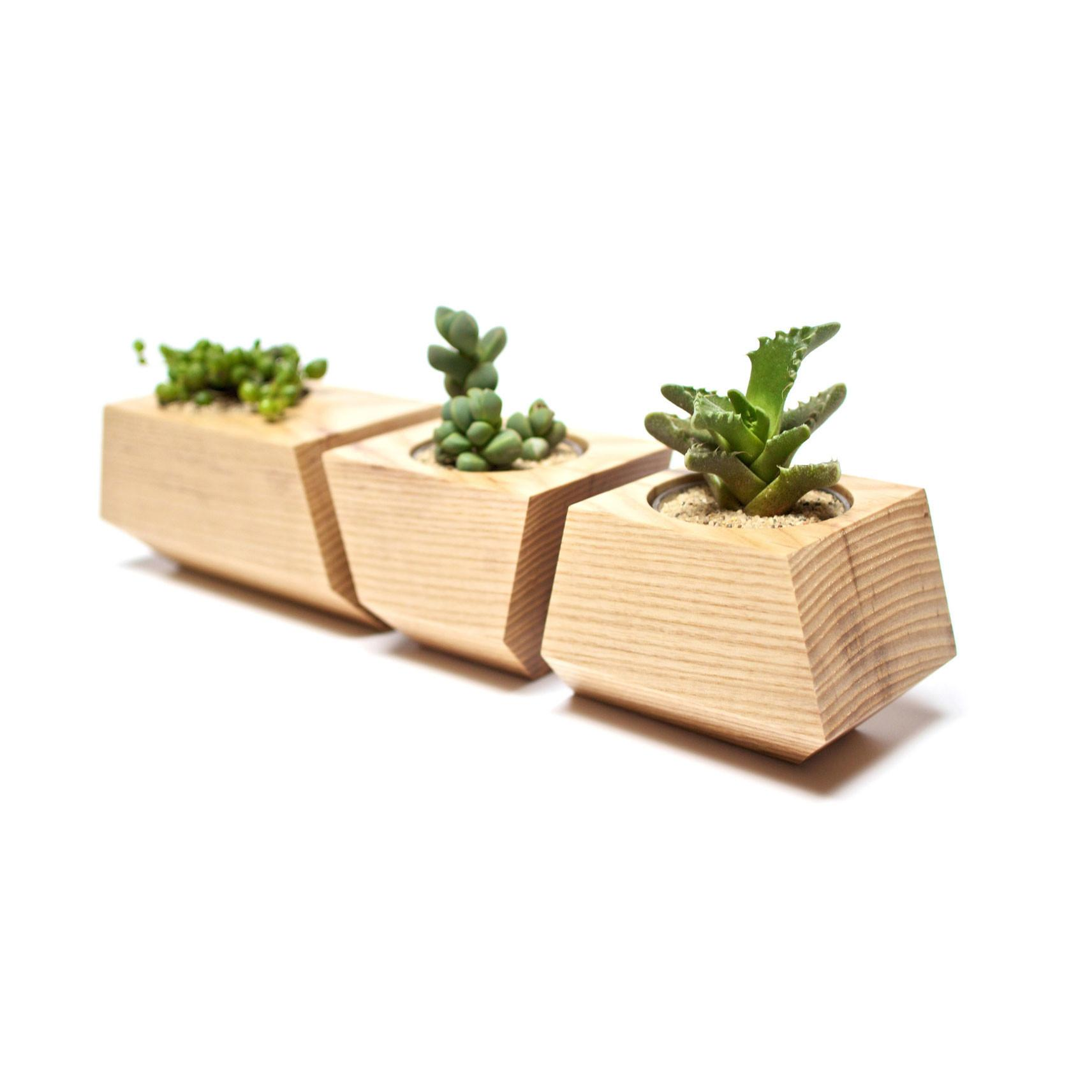Solid Ash Wood Planters Natural Harry Used