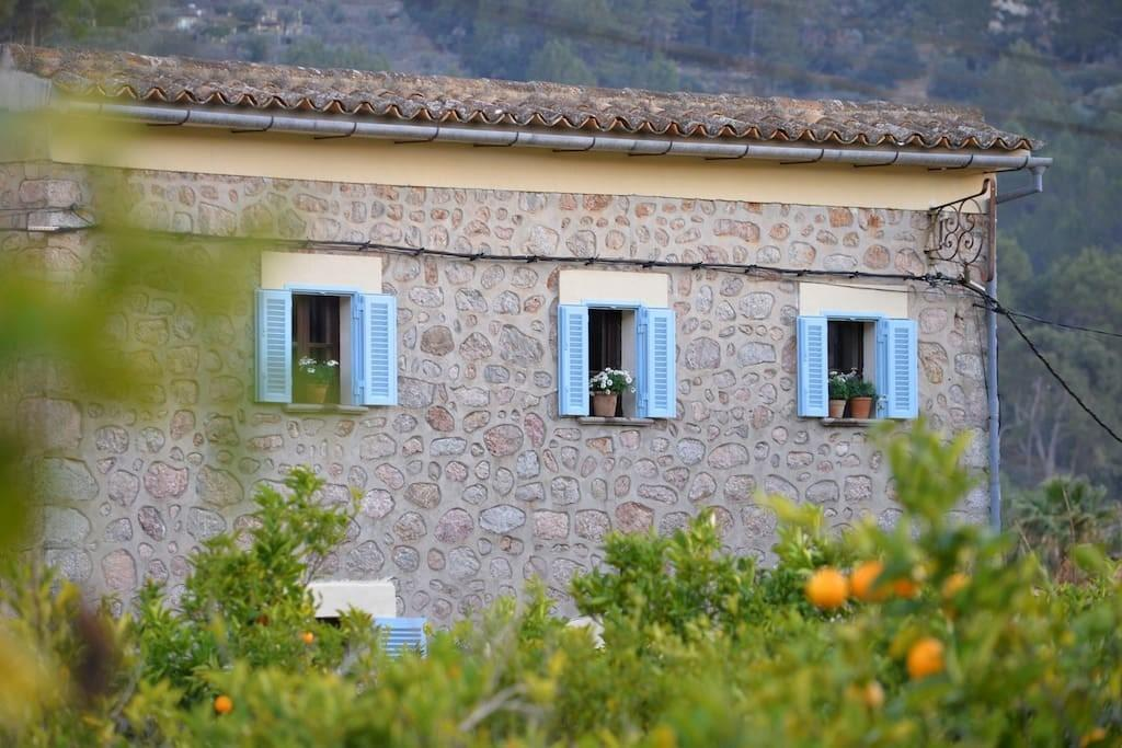Special Winter Offer Soller King Lic Applied Houses