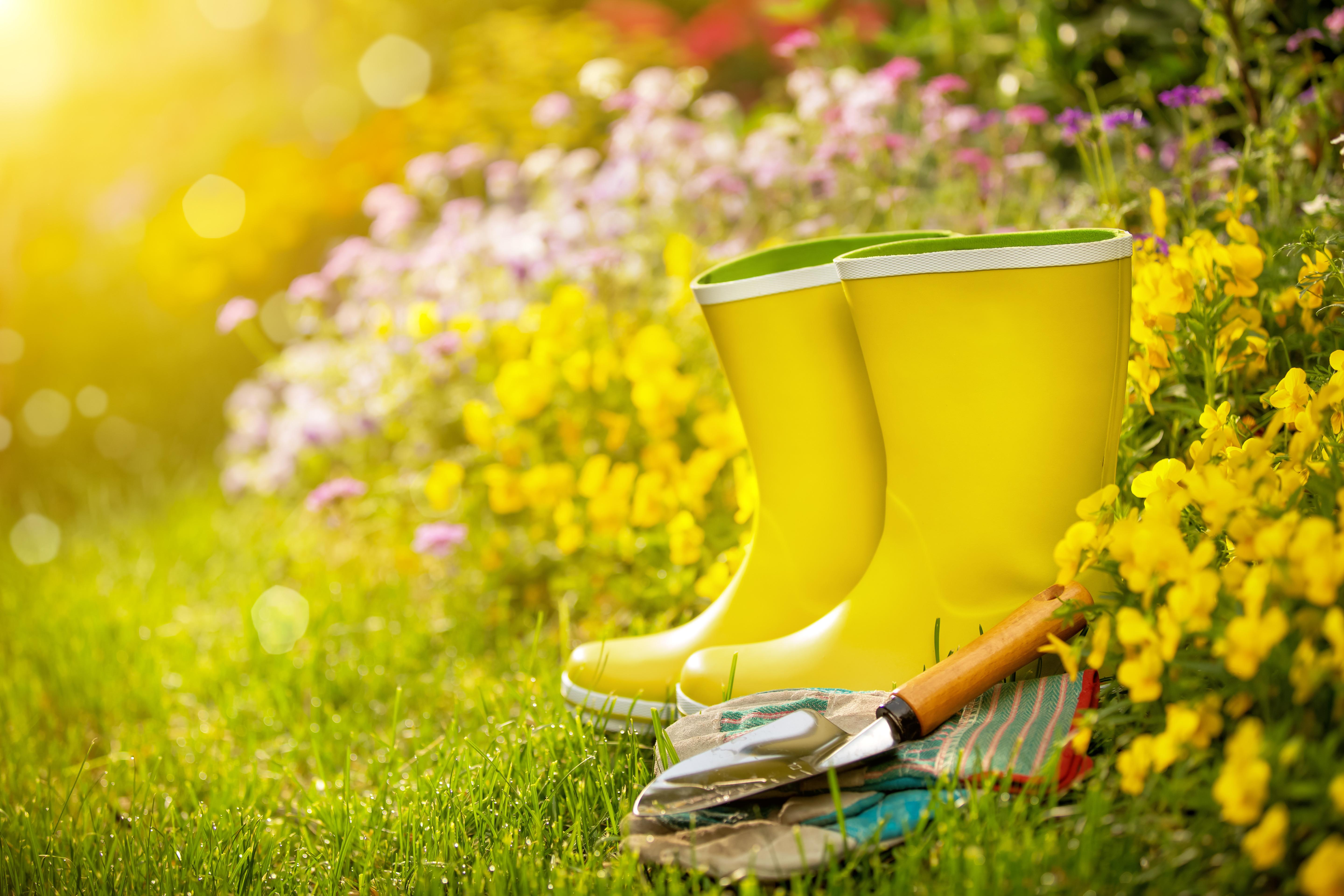 Spring Cleaning Checklist Tips Organizing Your Home