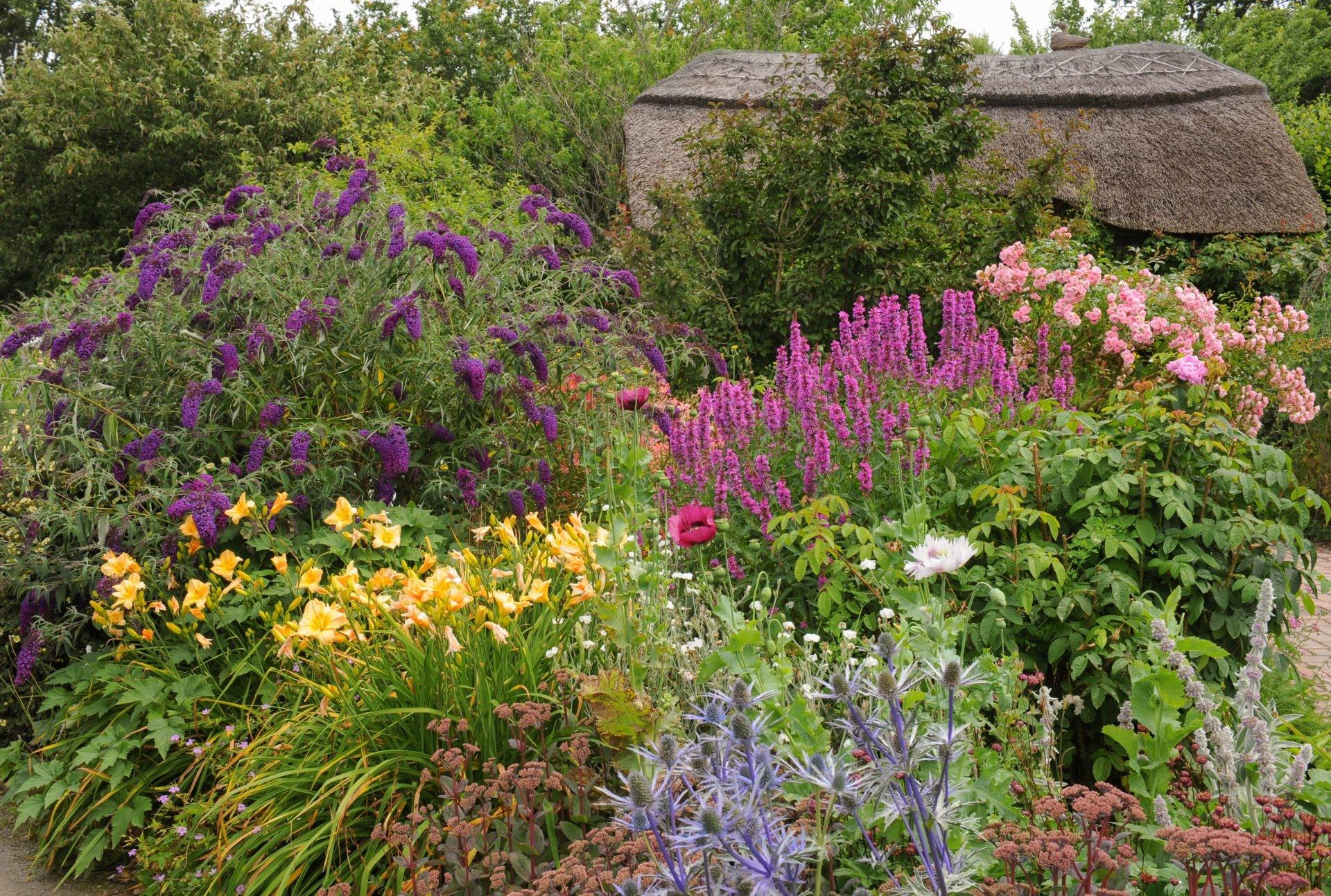 Spring Cleaning Your Perennial Garden River City Deck