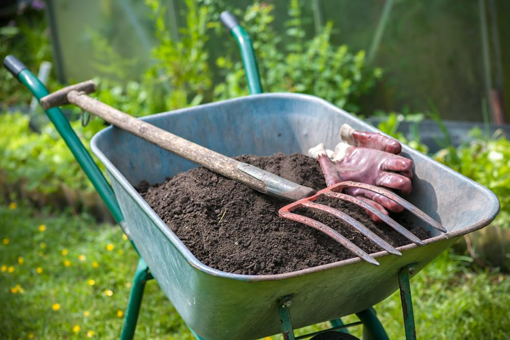 Spring Fall Yard Garden Clean Ups Personal Touch