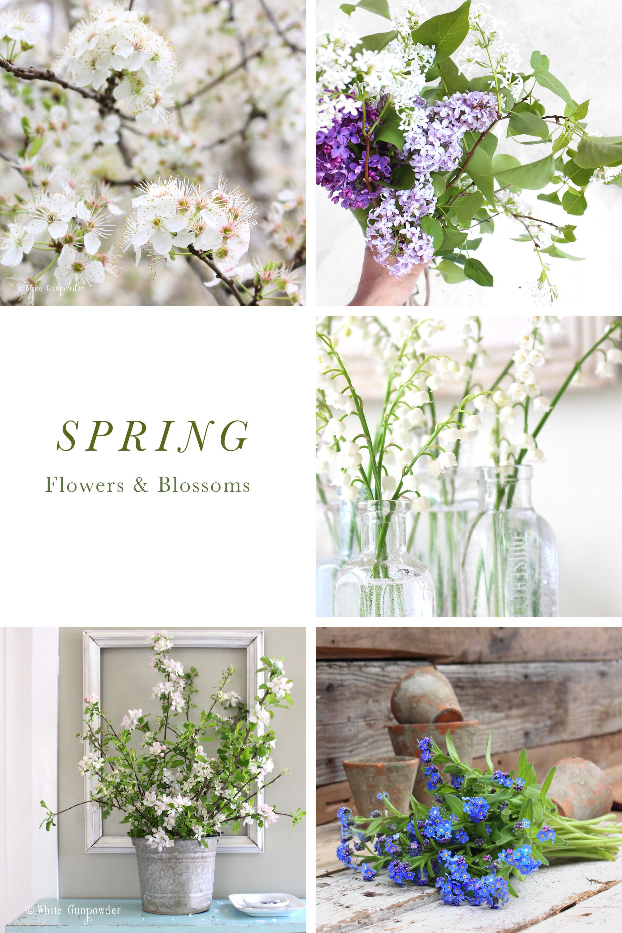 Spring Flowers Blossoms Decorating Your Home White