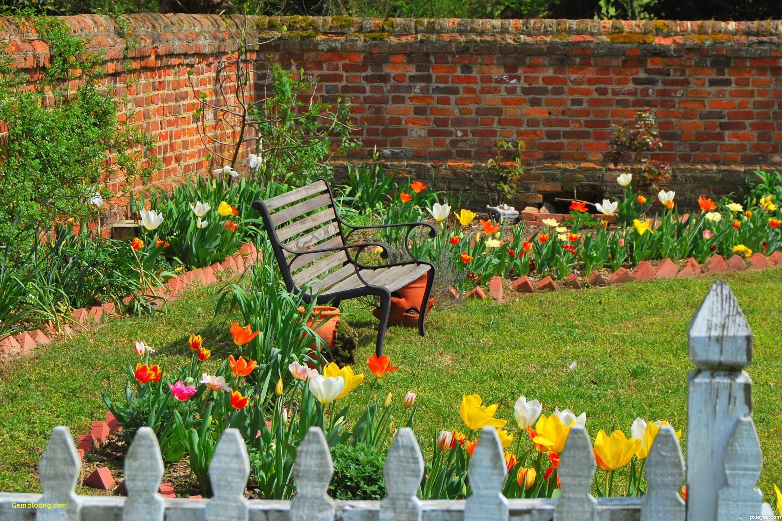 Spring Garden Lovable Cleaning Tips Your