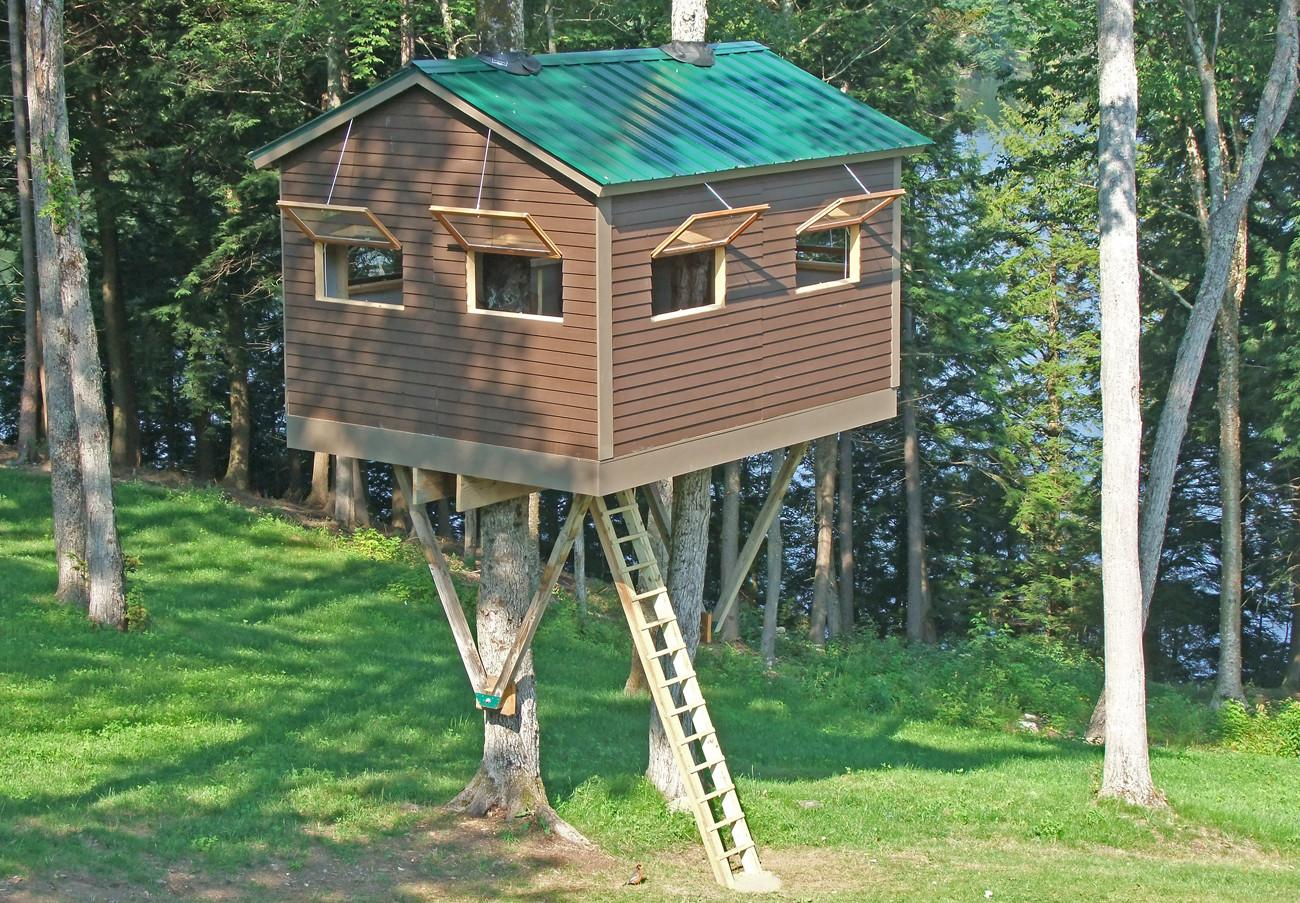 Standing Tree House Plans Designs