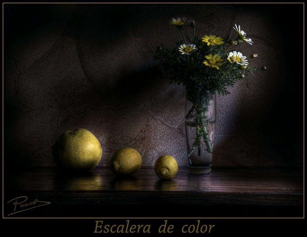 Still Life Oil Painting Ramon Romero