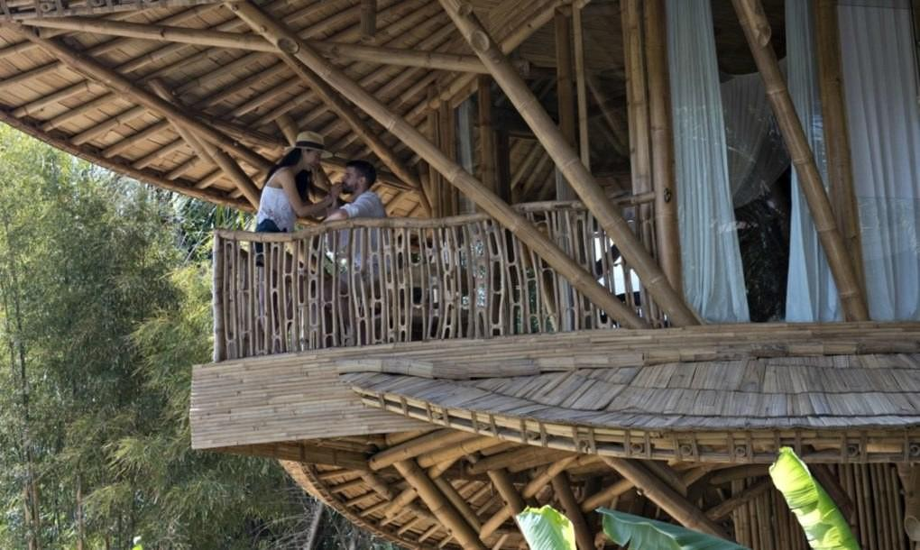 Stunning Multi Level Bamboo Home Stands Deep