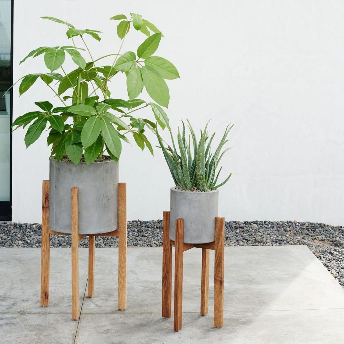 Stylish Planters Every Home Needs Interiors