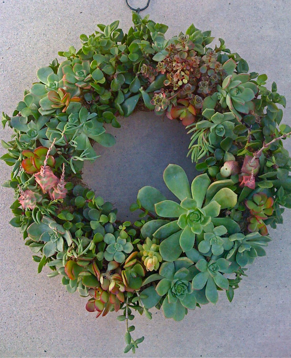 Succulent Diy Wreath Centerpiece Christmas Decor Mothers