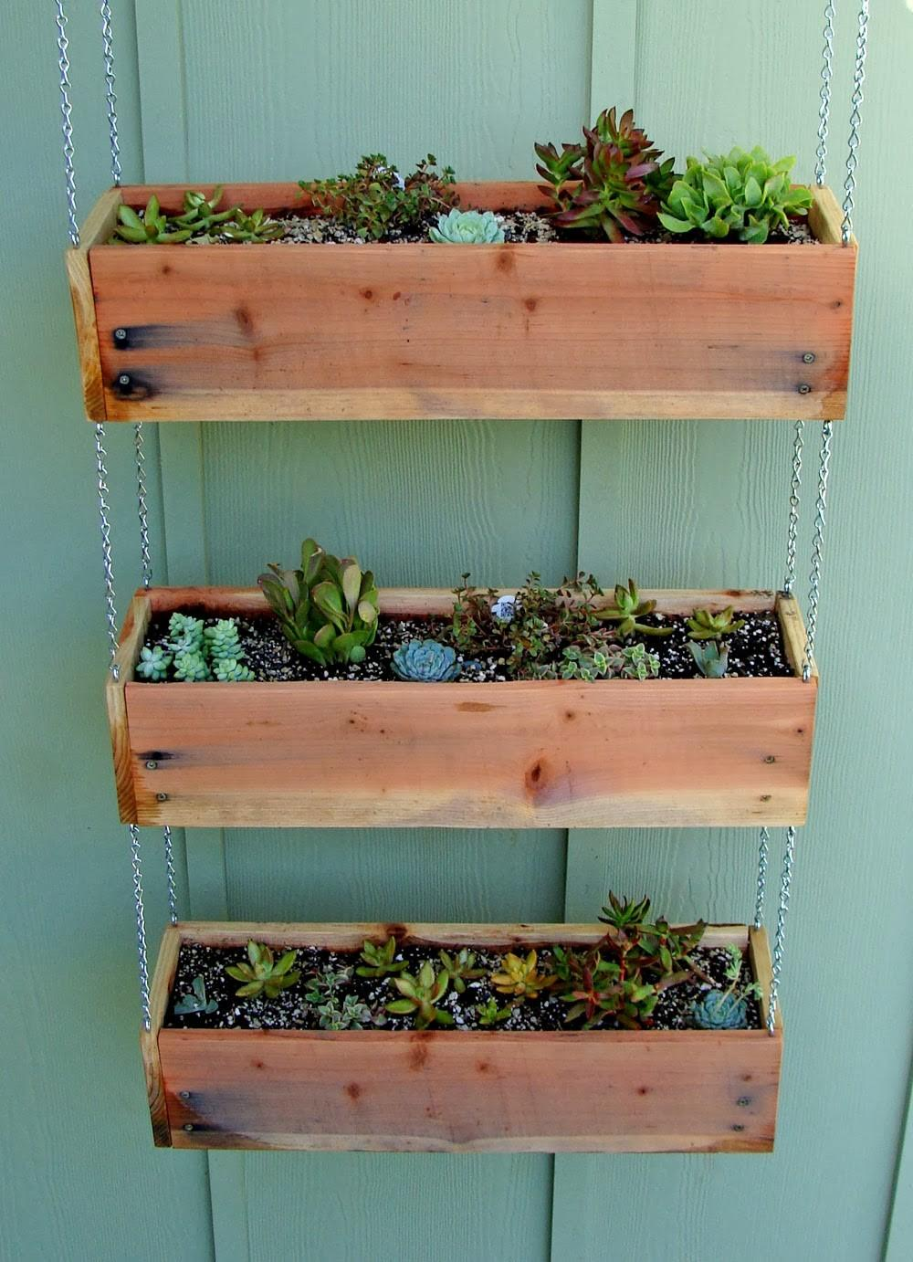 Succulent Planter Make Awesome Indoor Garden Homesfeed