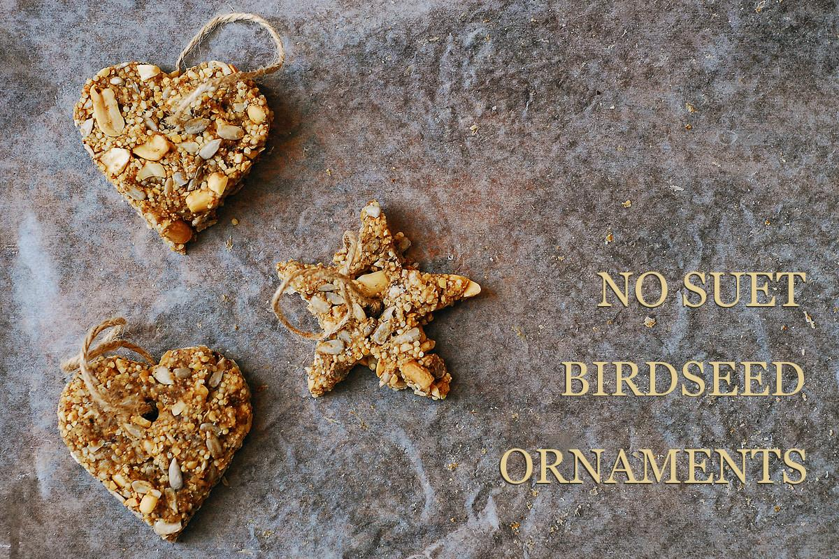 Suet Birdseed Ornaments Sas Does
