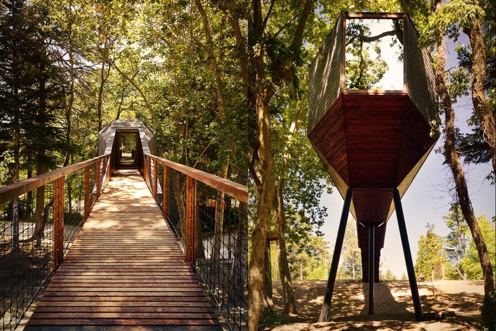 Sustainable Tree Snake Houses Completed Portugal