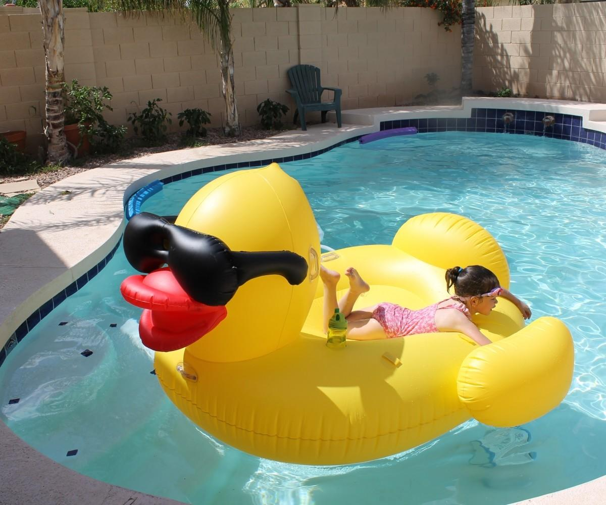 Swimming Pool Fun Floats Examplary Kids