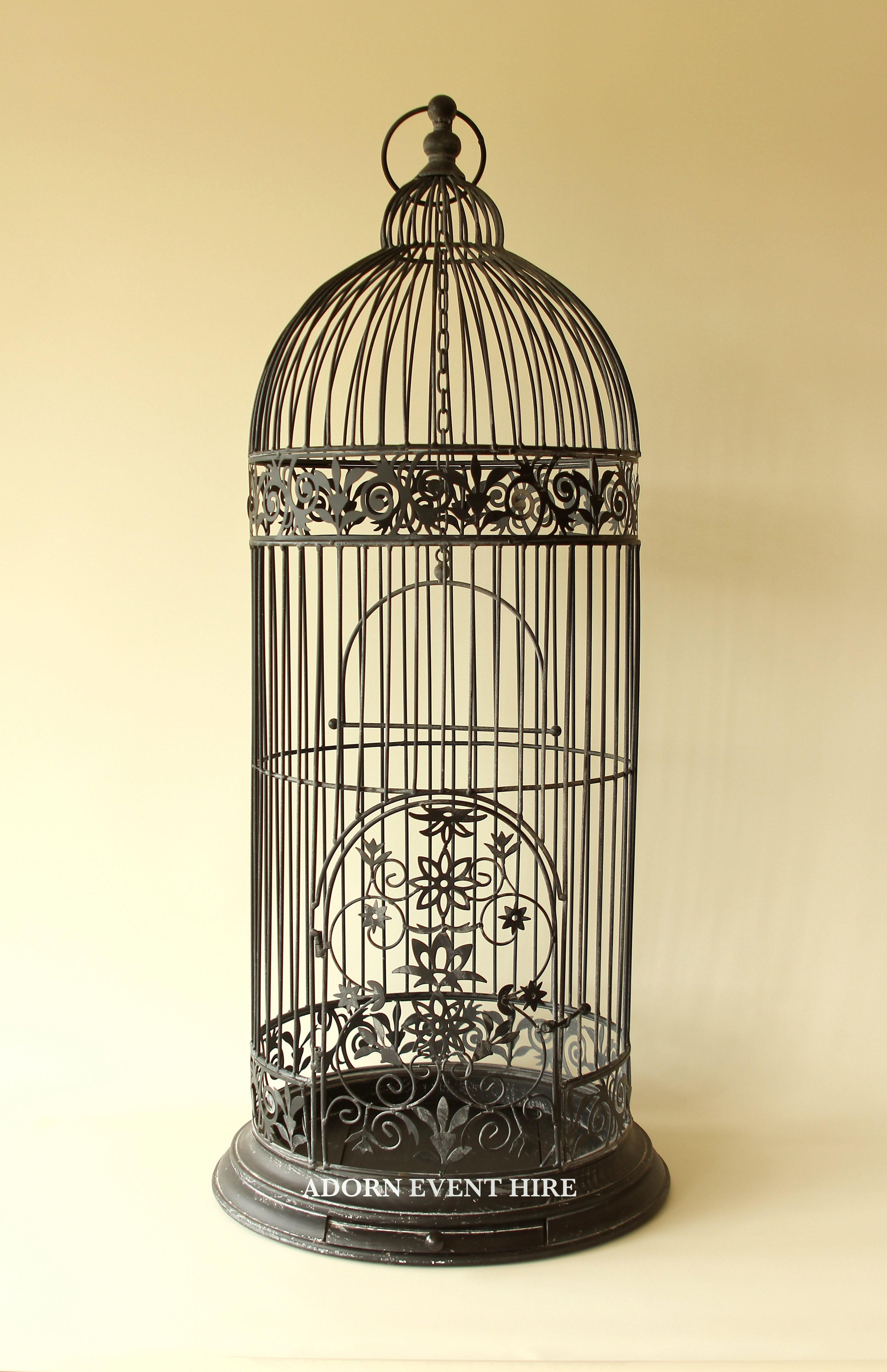 Tall Bird Cages