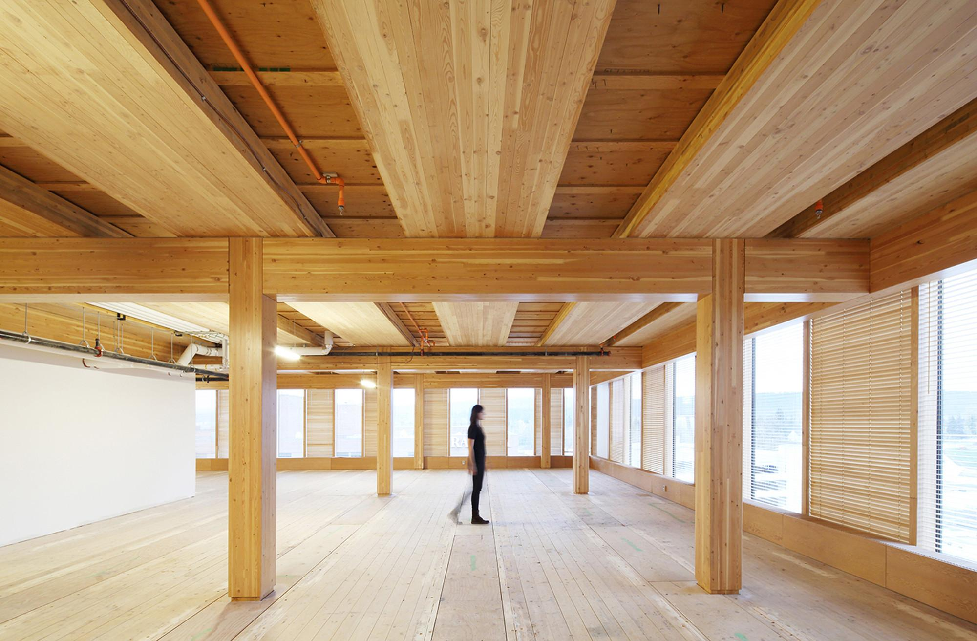 Tall Wood Building Self Supported Steel Structure Win