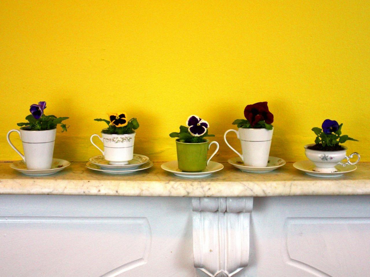 Teacups Planters Tos Diy